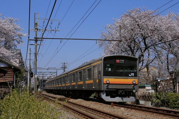 001pic.jpg