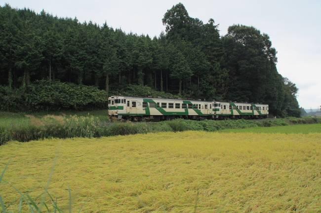 002鴻野山~大金pic.jpg
