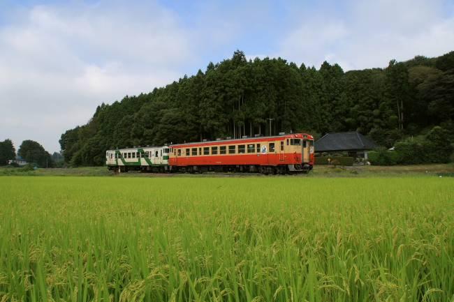 003鴻野山~大金pic.jpg