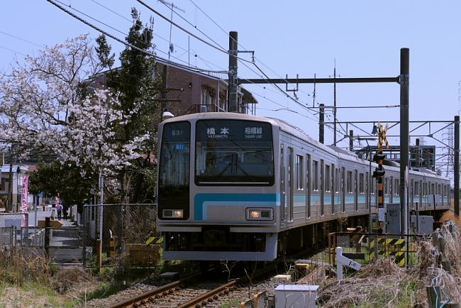003pic.jpg