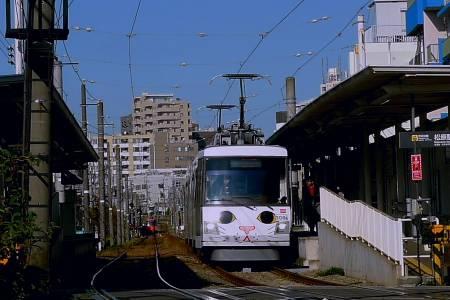 20171202松原招き猫電車.JPG
