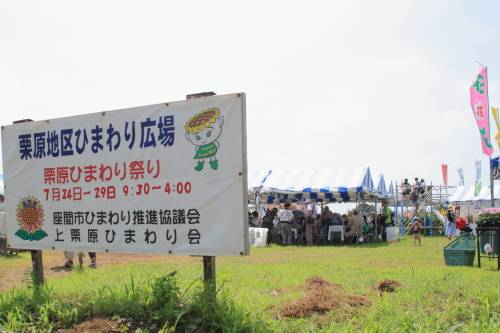 I3150座間のひまわり畑.JPG